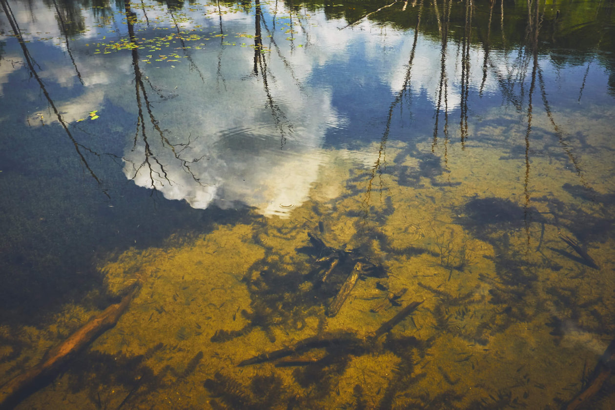 FujiFilm X100T - Water Reflections at Bizard Island Quebec Nature Photography