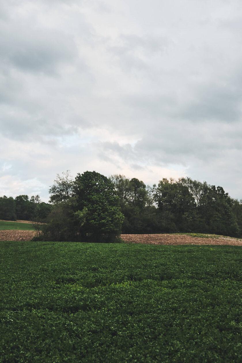 Fujifilm X100T - Landscape Photography Lafayette New York